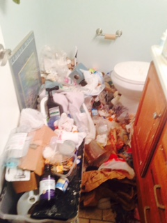 Hoarded bathroom