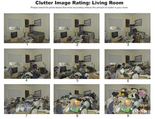 Clutter Image Rating